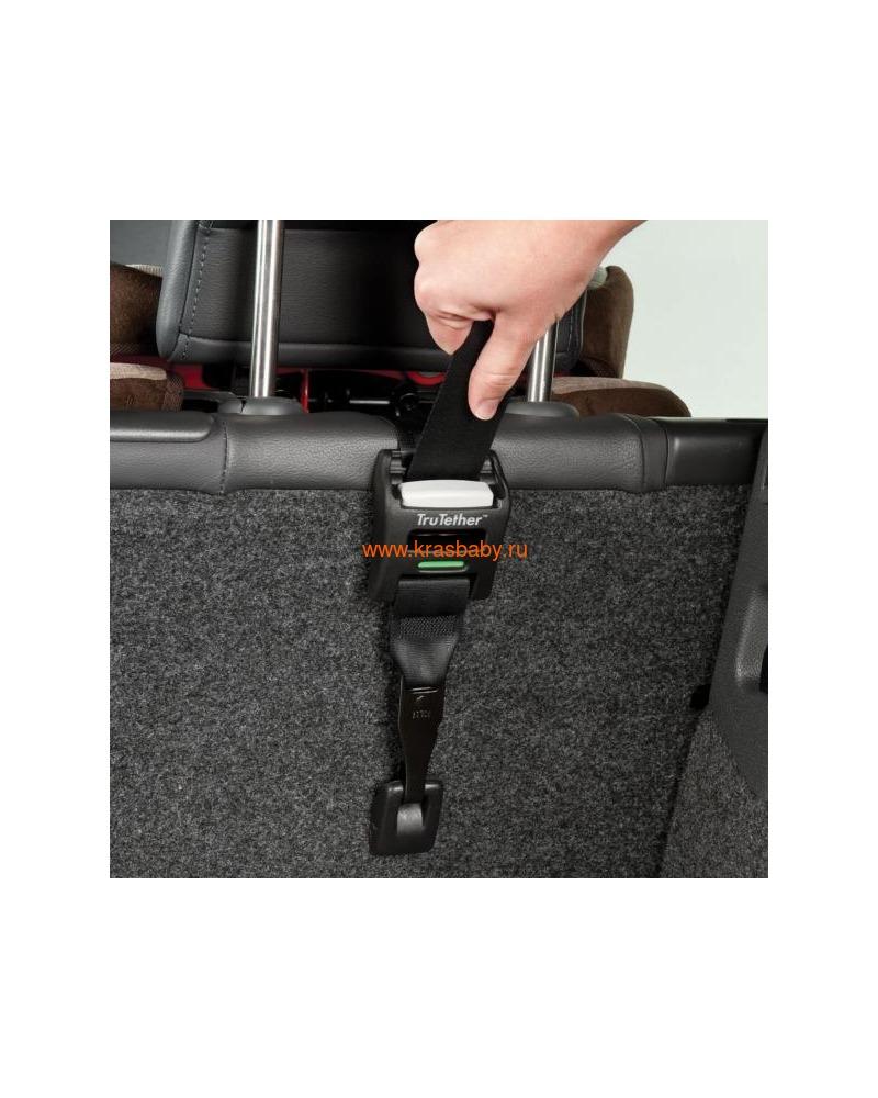 Автокресло EVENFLO Symphony™ e3 DLX Platinum Series™ Lauderdale (2-50 кг) (фото, вид 8)