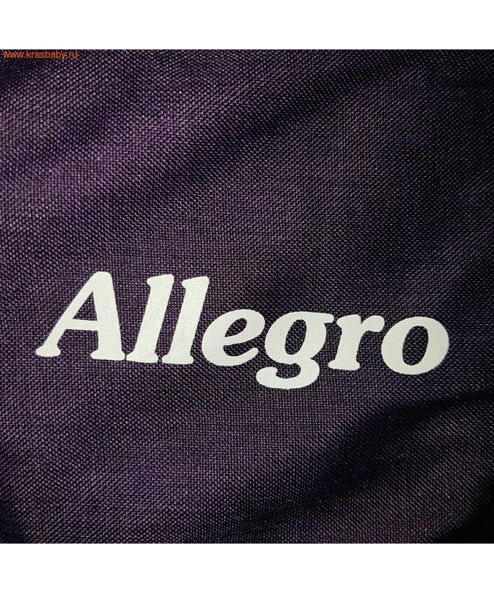 Коляска прогулочная CARRELLO Allegro (фото, вид 7)