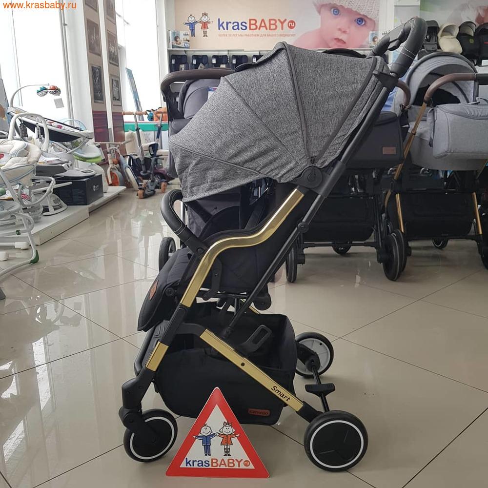 Коляска прогулочная Baby Tilly SMART T-169 (фото, вид 11)