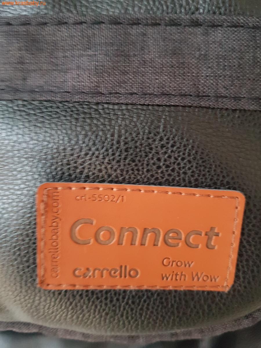 Коляска для двойни CARRELLO CONNECT 2 в 1 (фото, вид 14)