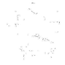 Коляска модульная CARRELLO Универсальная Модульная коляска Optima. Вид 2
