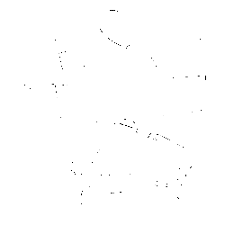 Коляска модульная CARRELLO Optima. Вид 2