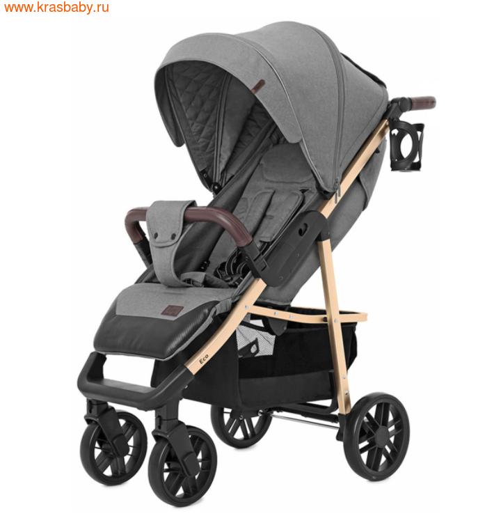 Коляска прогулочная Baby Tilly ECO (фото)