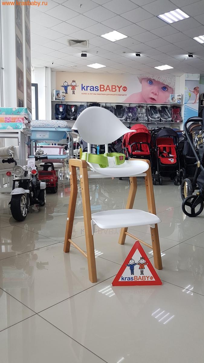 Стул детский HAPPY BABY ECOLUX (фото)